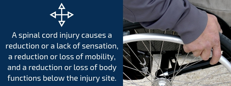 Auto Accidents And Spinal Cord Injuries (What You Need To Know)